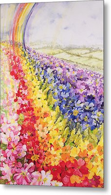 Primrose Rainbow Metal Print by Joan Thewsey