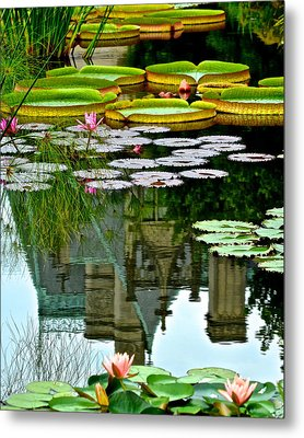 Prince Charmings Lily Pond Metal Print by Frozen in Time Fine Art Photography
