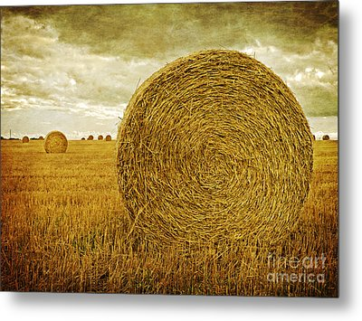 Prince Edward Island Pastoral Farm Fields Metal Print by Edward Fielding