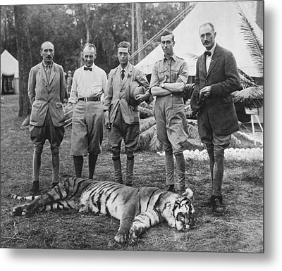 Prince Of Wales Kills Tiger Metal Print
