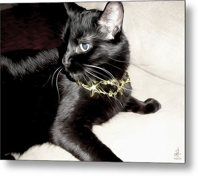 Metal Print featuring the photograph Princess Lucy by Pennie  McCracken