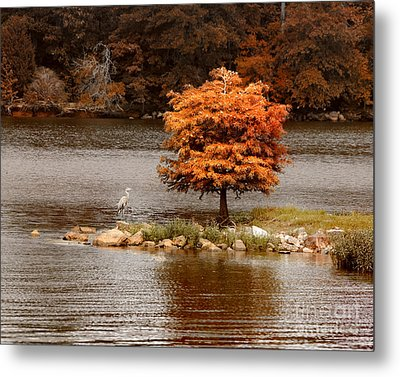 Private Island Metal Print by Jai Johnson