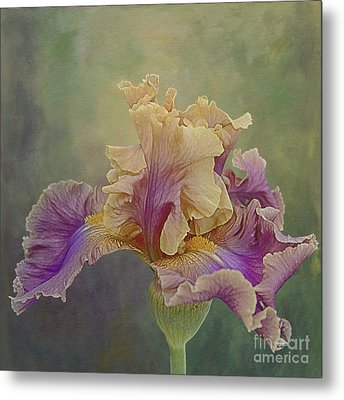 Metal Print featuring the photograph Proud Iris by Vicki DeVico