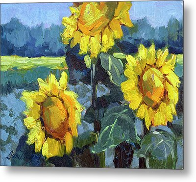 Provence Sunflower Trio Metal Print by Diane McClary