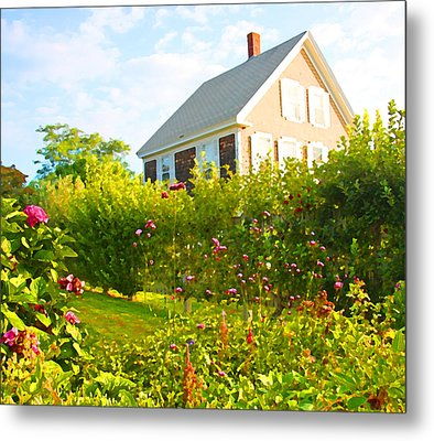 Provincetown Cottage With Green Brown And Pink Metal Print by Brooke T Ryan