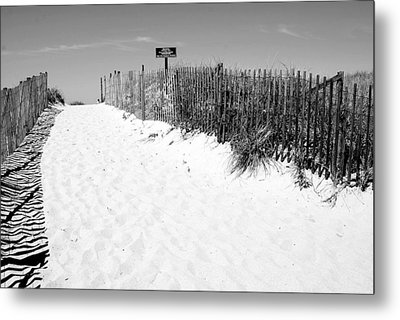 Provincetown Dunes On Cape Cod Metal Print