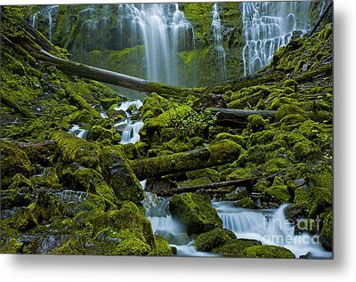 Metal Print featuring the photograph Proxy Falls by Nick  Boren