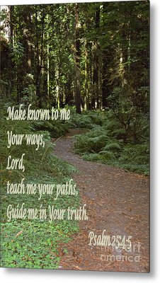 Psalm  - Paths Metal Print