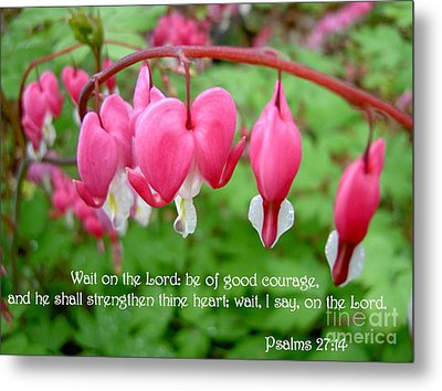 Psalms 27 14 Bleeding Hearts Metal Print by Sara  Raber