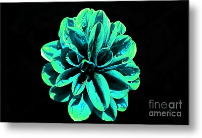Metal Print featuring the photograph Psychedelic Flower 5 by Sarah Mullin