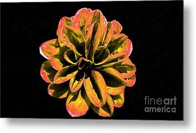 Psychedelic Flower 8 Metal Print