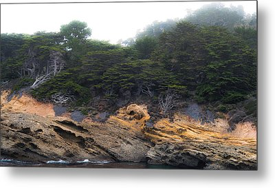 Pt Lobos Cliffside Metal Print