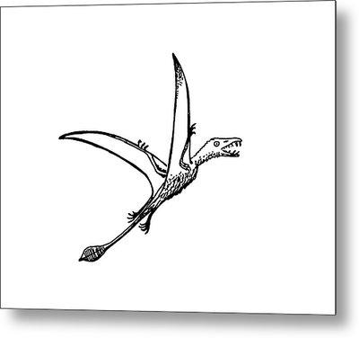 Pterosaur Eudimophodon Metal Print