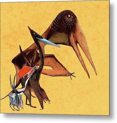 Pterosaur Size Comparison Metal Print
