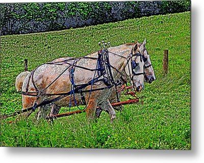 Pulling Their Weight Metal Print by Brian Graybill