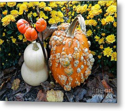 Pumpkin And Squash Metal Print