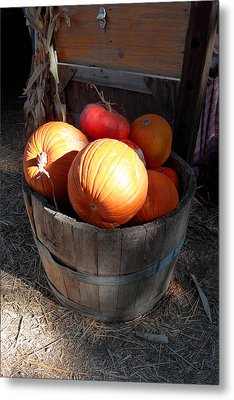 Pumpkin Barrel Metal Print