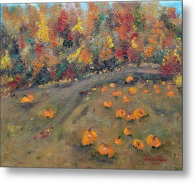 Pumpkin Field Metal Print by Judith Rhue
