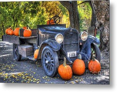 Pumpkin Hoopie Metal Print by Bob Hislop