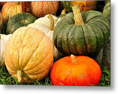 Pumpkin Pleasure Metal Print by Gene Sherrill