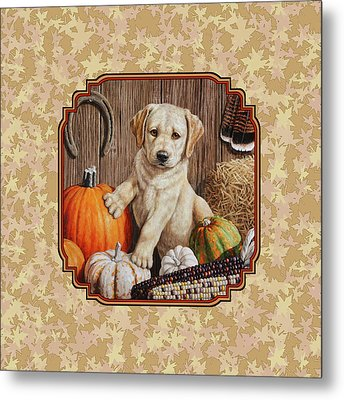 Pumpkin Puppy Leafy Background Metal Print by Crista Forest