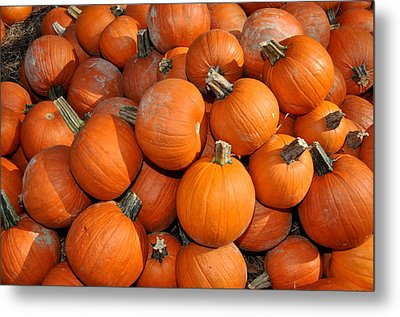Metal Print featuring the photograph Pumpkins by Diane Lent
