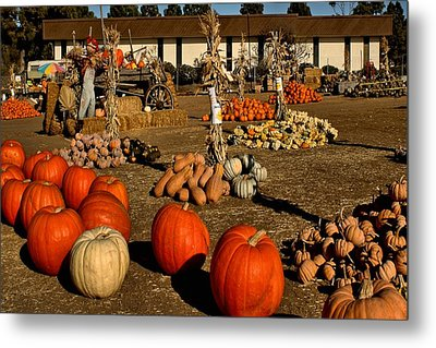 Metal Print featuring the photograph Pumpkins by Michael Gordon