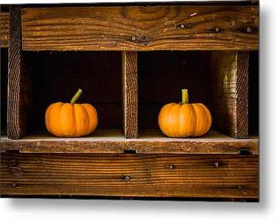 Pumpkins On Display Metal Print
