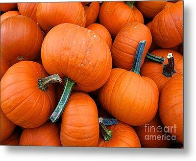 Pumpkins  Metal Print by Sarah Mullin