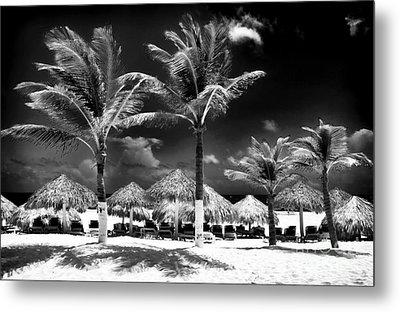 Punta Palms Metal Print by John Rizzuto