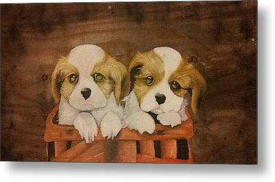 Puppies In A Basket Metal Print by Terrence Lewis