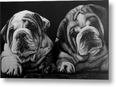 Puppies Metal Print by Jerry Winick