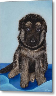 Puppy - German Shepherd Metal Print by Anastasiya Malakhova