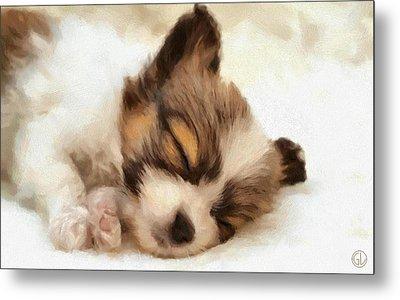 Puppy Nap Metal Print by Gun Legler