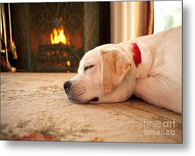 Puppy Sleeping By A Fireplace Metal Print by Diane Diederich