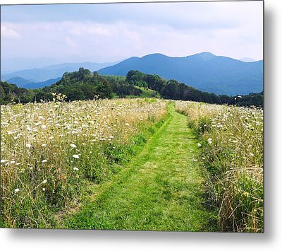 Purchase Knob Metal Print by Melinda Fawver