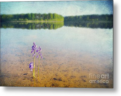 Purity Metal Print by Svetlana Sewell