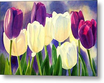 Purple And White Tulips Metal Print by Sharon Freeman