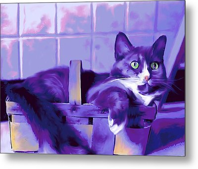 Purple Basket Case Metal Print by Mary Armstrong
