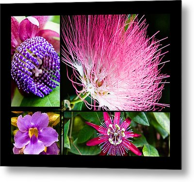 Purple Bouquet Metal Print by Melinda Ledsome