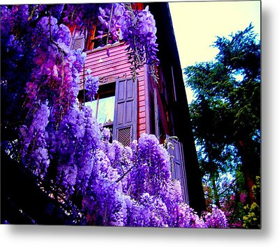 Metal Print featuring the photograph Purple Cheer by Zafer Gurel