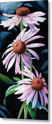 Purple Cone Flowers 1 Metal Print by Hanne Lore Koehler