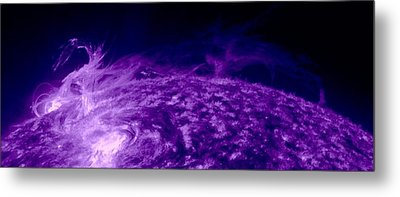 Purple Dragon Metal Print by Sunny Day