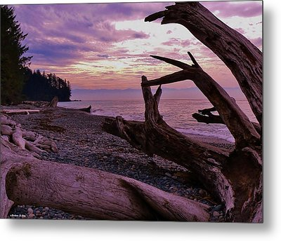 Metal Print featuring the photograph Purple Dreams In Bc by Barbara St Jean