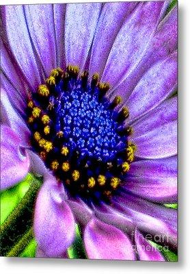 Purple Flower Sensation Metal Print