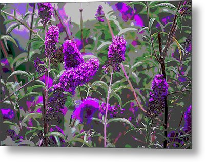 Metal Print featuring the photograph Purple Flowers by Suzanne Powers