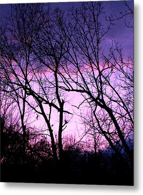 Metal Print featuring the photograph Purple Haze by Candice Trimble