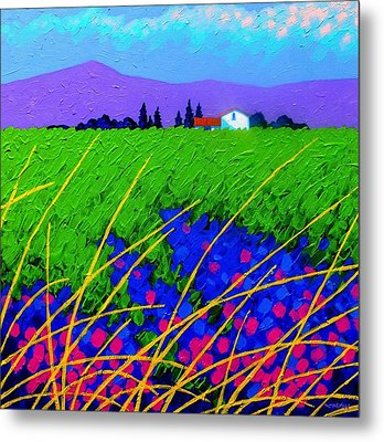 Purple Hills Metal Print by John  Nolan