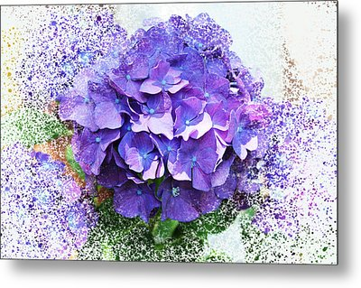 Purple Hydrangea Abstract Metal Print