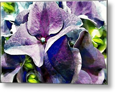 Purple Hydrangea  Flower Metal Print by Danielle  Parent